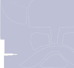 Larson-Danielson Graphic Viking Image
